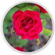 Blooming Rose Round Beach Towel