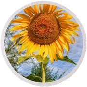 Blooming Sunflower V2 Round Beach Towel by Adrian Evans