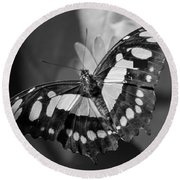 Blooms And Butterfly5 Round Beach Towel