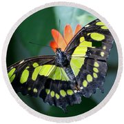 Blooms And Butterfly5c Round Beach Towel