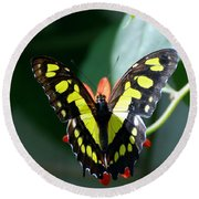 Blooms And Butterfly6c Round Beach Towel