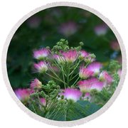 Blooms Of The Mimosa Tree Round Beach Towel