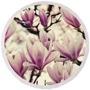 Blossoming Of Magnolia Flowers In Spring Time Round Beach Towel
