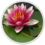 Blossoming Waterlily Round Beach Towel