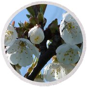 Blossoms 3 Round Beach Towel