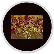 Blossoms And Tree In Yellow And Red Round Beach Towel