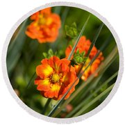 Blossoms In The Reeds Round Beach Towel