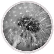 Blowball   Round Beach Towel