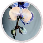 Blue And White Orchids Round Beach Towel