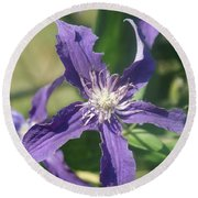 Blue Angel Clematis Close   # Round Beach Towel