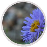 Blue Aster Round Beach Towel