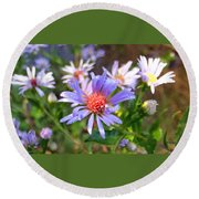 Blue Asters 3 Round Beach Towel