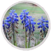 Blue Bells 1 Round Beach Towel