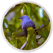 Blue Bird With A Yellow Throat Round Beach Towel