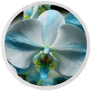 Blue Bow Orchid Round Beach Towel