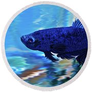 Blue Boy Round Beach Towel