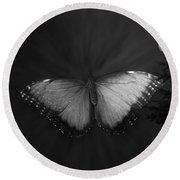 Blue Butterfly Ascending Bw Round Beach Towel
