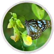 Blue Butterfly In The Green Garden Round Beach Towel