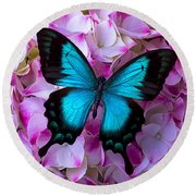 Blue Butterfly On Pink Hydrangea Round Beach Towel