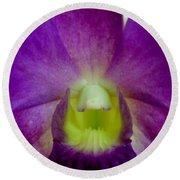 Blue Charm X Aridang Blue Orchid - 2 Round Beach Towel