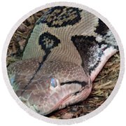 Blue Eyes Snake Round Beach Towel