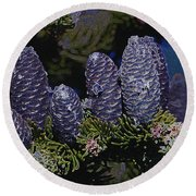Blue Fir Cones 2 Outlined Round Beach Towel