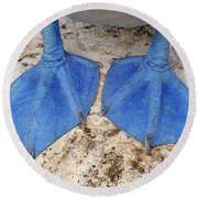 Blue-footed Booby Feet  Round Beach Towel