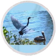 Blue Heron And Pelican Round Beach Towel