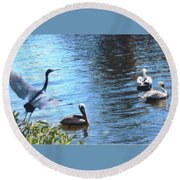 Blue Heron And Pelicans Round Beach Towel