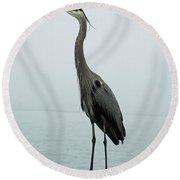 Blue Heron Fulton Harbor Tx Round Beach Towel