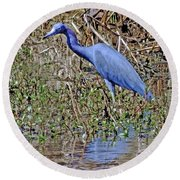 Blue Heron Louisiana Round Beach Towel