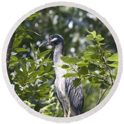 Blue Heron Profile Round Beach Towel