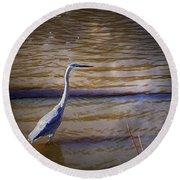 Blue Heron - Shallow Water Round Beach Towel