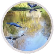 Blue Herons On Golden Pond Round Beach Towel