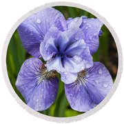 Blue Iris Flower Raindrops Garden Virginia Round Beach Towel