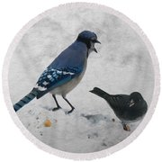 Blue Jay And Junco Round Beach Towel