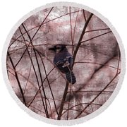 Blue Jay In The Willow Round Beach Towel