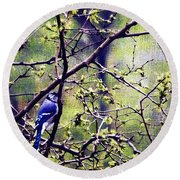 Blue Jay - Paint Effect Round Beach Towel