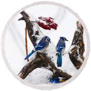 Blue Jays In Winter Round Beach Towel