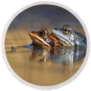 Blue Love ... Mating Moor Frogs  Round Beach Towel by Roeselien Raimond