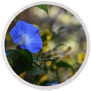 Blue Morning Glories Round Beach Towel