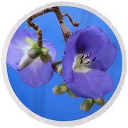 Blue Orchid Round Beach Towel