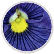 Blue Pansy Round Beach Towel