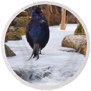 Blue Pheasant  Round Beach Towel