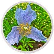 Blue Poppy In Les Jardins De Metis Or Reford Gardens Near Grand-metis-quebec Round Beach Towel