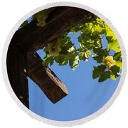 Blue Sky Grape Harvest - Thinking Of Fine Wine Round Beach Towel