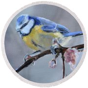 Blue Tit And Blossoms Round Beach Towel