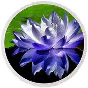 Blue Water Lily Reflection Round Beach Towel