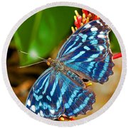 Blue Wave Butterfly Round Beach Towel