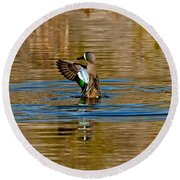 Blue-winged Teal Flapping Round Beach Towel